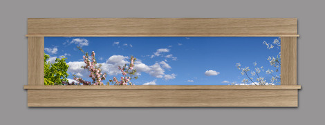 Photo Mural 6tt_63x18md_AC1_White-Oak