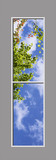 Ceiling Mural 6cd_2x8md01_24vr