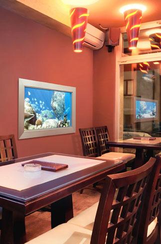 Aquarium Virtuel Esea